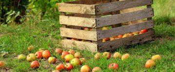 hele appeltaart blog header liever de liefde